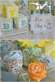 boy baby shower decorations chic country garden theme