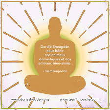 Powerful Qualities Of Dorje Shugden In Memes French Les Grandes