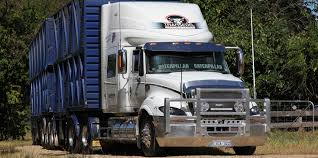 MC Truck Driver - Driver Jobs Australia Livestock Transportation Basics Truckdrivingjobscom July 2017 Trip To Nebraska Updated 3152018 Big Timber Montana Pt 4 Job Posting Dicated Bull Hauler Steves Transport Facebook Minnesota Trucking Companies Mn Driver Benefits Package At Hunt Flatbed Youtube Stidham Inc Marbert Truck Carrying 78 Head Of Cattle Rolls Dash Camera Captures Footage Jobs Express