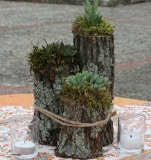 deco tronc d arbre plus de 25 idées uniques dans la catégorie troncs d arbres sur