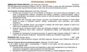 Resume Profile Paragraph Examples Fresh Objective Statement Entry Level Myacereporter