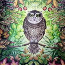 Take A Peek At This Great Artwork On Johanna Basfords Colouring Gallery Secret Garden BookJoanna