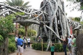 Jacksonville Zoo Named In Top 25 Best Zoos In US