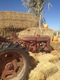 Hurricane Utah Pumpkin Patch pumpkin patch grand opening at petersen family farm presented by
