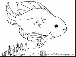 Fabulous Tropical Fish Coloring Page With Pages Of And Tank