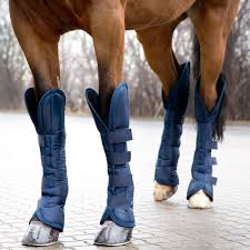 Horze Shipping Boots Bullhide Belt Coupons Deals Direct Heaters Equine Couture Joy Saddle Pad Smart Scrubs Promo Code Best Coupons Western Schools Transfer Window Deals 2018 Up To 85 Off Gucci Verified Couponslivesunday Horse Equine Traformations Coupon Advertising Ideas Horseloverz Com Free Shipping August Shrockworks Discount March 2019 Apple Calendar Back In The Saddle Coupon Bob Evans Military Most Updated Lovesaccom Coupon Code 10 15 Horseloverz Competitors Revenue And Employees Owler