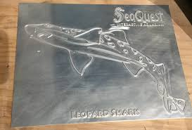 SeaQuest Interactive Aquarium Opens In Las Vegas Kids And Sharks A Fun Morning At Seaquest Las Vegas Vintage Blue Under The Sea Interactive Aquarium Discount Tickets New Attraction Comes To Planned For River Ridge Mall In The Salt Project Things Do Planned Aquarium Folsom Faces Community Opposition Deal Now Valid All Summer Admission Tickets Or Ultimate Experience Package Certifikid Seaquests Problems Extend Beyond Discount Opening United Moms Network Quest Coupons Mk710 Deals
