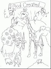 Wonderful Bible Creation Coloring Pages With Sunday School And Forgiveness