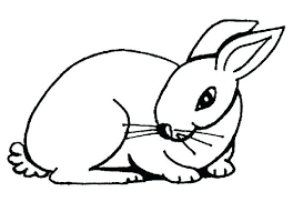 Full Image For Printable Bunny Rabbit Coloring Pages Free