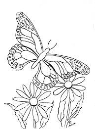 Butterfly Coloring Page To Print And Color Visit My Blog See More