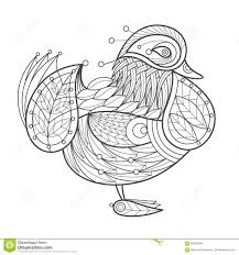 Royalty Free Vector Download Adult Coloring Bird Mandarin Duck