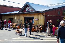 Pumpkin Picking Harford County Maryland by Harvest Schedule Milburn Orchards