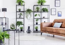 weiße wohnzimmer mit großstadtdschungel auf schwarzen blechboden und pfingstmontag große braune ledercouch stockfoto und mehr bilder behaglich