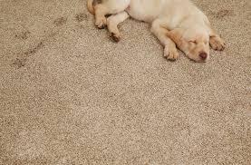 Coles Fine Flooring Teacher Appreciation by Coles Fine Flooring 1170 W Morena Blvd San Diego Ca Tile Ceramic