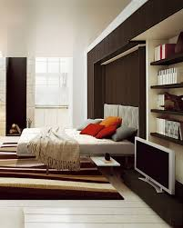 Clei Murphy Bed by Murphy Bed Cabinetherpowerhustle Com Herpowerhustle Com