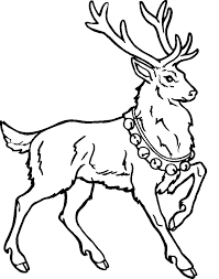 Reindeer Coloring Pages Pictures