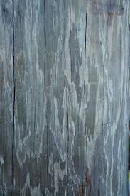Tin Shed Savage Mn Menu by 12 Best Wood Grains Images On Pinterest Grains Wood Grain