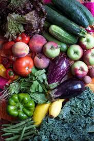 Allardt Pumpkin Festival Pageant by 28 Best Giant Fruit And Vegetables Images On Pinterest Giant