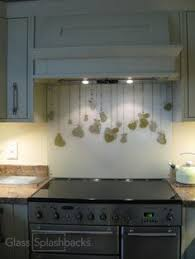 Dandelion Haze Subtle Glass Splashback From The Contemporary Collection At DIYSplashbackscouk This Homeowner Opted For A Vignette Style Splashb