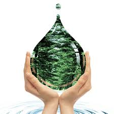 culligan faucet filter replacement cartridge 1 pack culligan fm 15ra faucet filter replacement cartridge fits