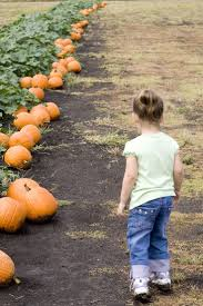 Pumpkin Patch Daycare Nj by 287 Best Parenting Images On Pinterest Stuff Parents And