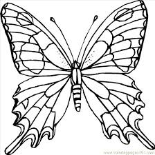 Butterfly A Coloring Page Free Printable Pages Butterflies
