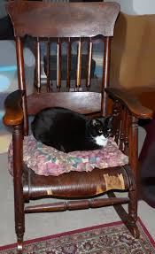 Family Rocking Chair Cat | Perkins And Teeny Tuxedo