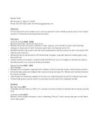 Corporate Sales Resume The Executive Sample Pdf