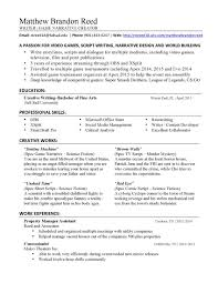 Best Resume Writer Beautiful Service Creative Services ...