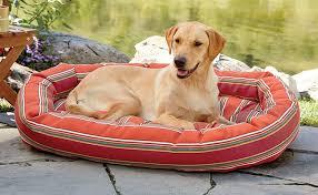 dog beds memory foam tempur pedic bolster beds orvis