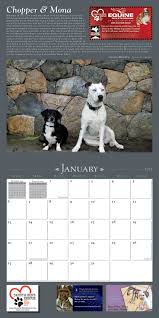 19 Best Dog Rescue Calendars Images On Pinterest | Design ... Wildlife Archives Saving More Pets Aussie Pooch Mobile Dog Wash Grooming Franchise Ph 1300 369 Pet City Mt Gravatt Adoptions Shop Warehouse Buy Supplies Online Petbarn Rspca Accsories Kmart Food Care Home Big W Adopt An Animal Find The Perfect Pet Today Rspca Nsw Best Friends Supercentre