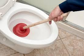toilettes bouches que faire canalisation bouchée débouchage canalisations 24 24