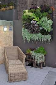 Container Garden Succulent Wall Hanging Many Fleshy Succulents Are Ediblecheck Before Tasting