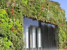 pour mur exterieur mur végétal extérieur installation de murs végétaux en extérieur