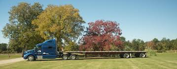 100 Fleetwood Trucking Meeting Wood Fiber Challenges