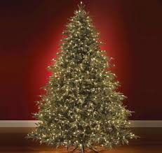 Best Live Christmas Trees For Allergies by Vignette Design Christmas Trees And Greens Faux Real Or Real Fir