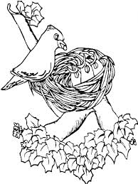 Birds Nest Coloring Page For KidsFree Pages Kids
