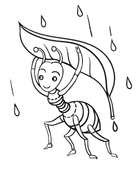 Free Ant Coloring Page