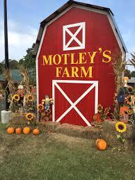 Hillcrest Farms Pumpkin Patch by Gavin Lesnick Glesnick Twitter