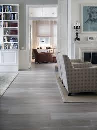 Cool Gray Vinyl Plank Flooring On Impressive Best 25