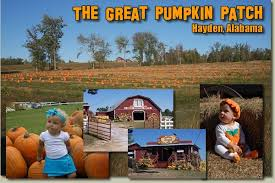 Pumpkin Patch Auburn Al by Great Pumpkin Patch Coupons In October Clipper Magazine Plus