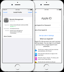 Mobile Device Management and FileMaker Go Linear Blue