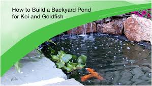 Backyards: Wondrous Building A Backyard Pond. Backyard Ideas ... Diy Backyard Waterfall Outdoor Fniture Design And Ideas Fantastic Waterfall And Natural Plants Around Pool Like Pond Build A Backyard Family Hdyman Building A Video Ing Easy Waterfalls Process At Blessings Part 1 Poofing The Pillows Back Plans Small Kits Homemade Making Safe With The Latest Home Ponds Call For Free Estimate Of 18 Best Diy Designs 2017 Koi By Hand Youtube Backyards Wonderful How To For
