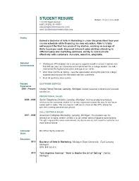 First Time Job Resume Template Templates For All