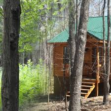 100 Wolf Creek Cabins Black Bear Cabins Cabin Rentals Mena Arkansas Wolf Pen Gap Bear