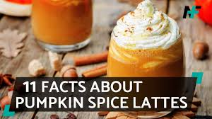 Pumpkin Spice Latte Dunkin Donuts Ingredients by 11 Facts You Never Knew About Pumpkin Spice Lattes Youtube