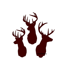 Three Deer Buck Heads Wall Decal Vinyl Wall Decals Wall Decor | Etsy At Superb Graphics We Specialize In Custom Decalsgraphics And Deer Decal Fish Duck Monogram Car Truck Amazoncom Show Me Your Rack Archery Hunting Bowhunting Mathews Logo With Whitetail White Duck Fish Logos Kc Vinyl Decals Signs Banners Bow Lve Family Hoof Print Etsy For Bigbucklife Back Window Inspirational Fresh Browning Pictures Free Download Best