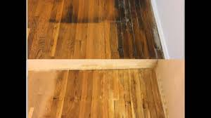 Dog Urine On Hardwood Floors Odor by Wood Floors For Dogs With Hardwood Floor Scratches Laura Williams