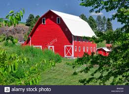 Red Barn. The Palouse, Near Colfax, Washington Stock Photo ... Red Barn Washington Landscape Pictures Pinterest Barns Original Boeing Airplane Company Building Museum The The Manufacturing Plant Exterior Of A Red Barn In Palouse Farmland Spring Uniontown Ewan Area Usa Stock Photo Royalty And White Fence State Seattle Flight Interior Hip Roof Rural Pasture Land White Fence On Olympic Pensinula