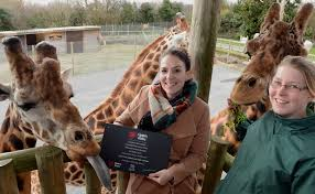 100 Farm Folly Awards Best Day Out In Wales Top Ten Zoos In The World